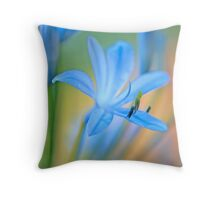 The Illumination of the Colors Throw Pillow