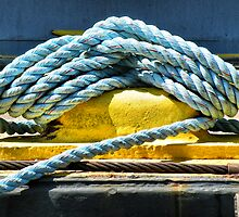 Blue Rope On Cleat by joan warburton