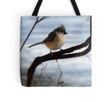 Tufted Titmouse Watching Snow Melt Tote Bag