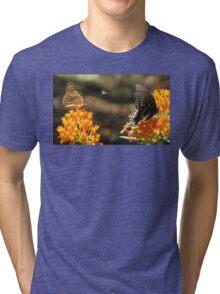 Tiny Winged Festivity Tri-blend T-Shirt