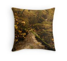 Baxenghyll Gorge, Ingleton, Ribblesdale, Yorkshire Dales Throw Pillow