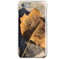 Tulip Tree Leaf – Frozen Raindrops in the Sunshine iPhone Case/Skin
