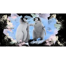penguins 2 Photographic Print