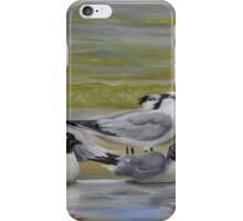 Shorebird Group iPhone Case/Skin