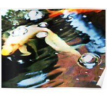 Pond fish and bubbles Poster