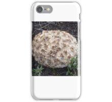 Fungi Ball iPhone Case/Skin