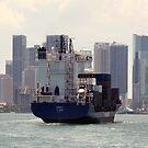 Cargo Ship by Juana Maria Garcia Domenech