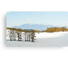 Snowy pass above Escalante, UT Canvas Print