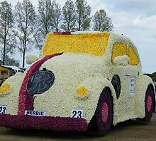 Herbie ( The Volkswagon Beetle)  Rides Again ! by JJsEscape