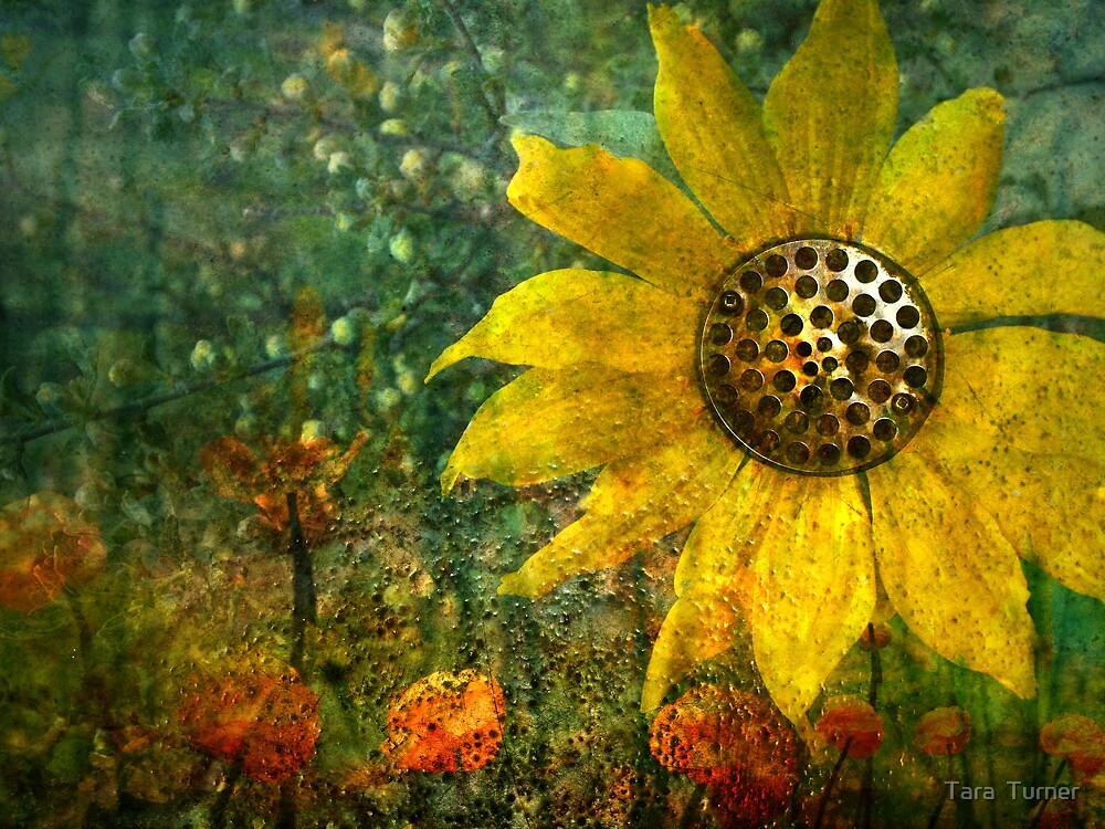 Flowers For Fun by Tara  Turner