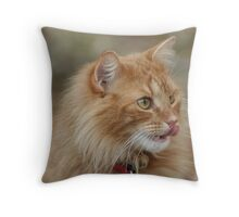 Whisker Licking Good Throw Pillow