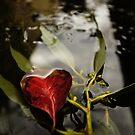 Autumn love by Bel Jones