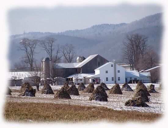 Amish Winter Serenity by Wes Clemmer