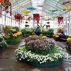 The Conservatory at Rosalind Park, Bendigo by Eleanor Wylie
