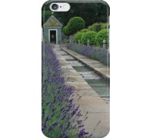 The Garden Of Surprises iPhone Case/Skin