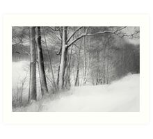 gateway to the winter forest Art Print