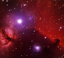 Horsehead nebula in Orion by outcast1