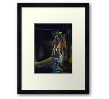 Mary 2 Framed Print