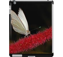 Great Southern White iPad Case/Skin