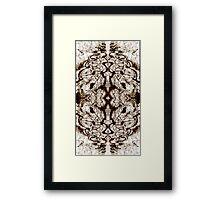 Sunshadow Framed Print