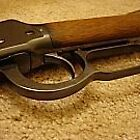 Winchester 1898 by Candy Anne Anguiano