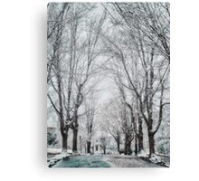 Snow. Brookline MA Canvas Print