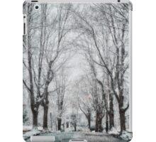Snow. Brookline MA iPad Case/Skin