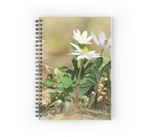 Its Spring! Spiral Notebook
