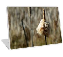 Overwintered Seed  Laptop Skin