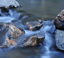 Creek by John Anderson