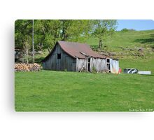 Just Country Canvas Print