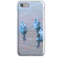 Duck Duck Goose iPhone Case/Skin