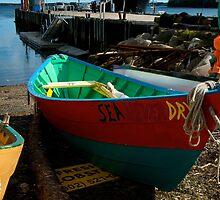 SeaNeverDry by Roxane Bay