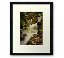 Lower Fall Framed Print