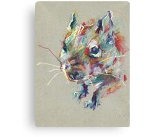 Little degu Canvas Print