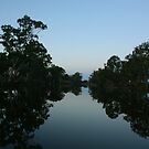 Loddon River Dusk - Bridgewater Victoria by Rachael Taylor