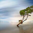 Starbreeze by Ben Ryan