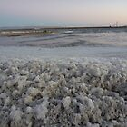 Salt Water at Port Augusta Power Station by Rob Moffatt