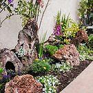 My California Rock Garden! by heatherfriedman