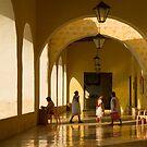 Valladolid Church Arcade by Zane Paxton