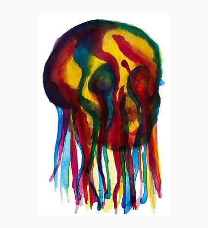 Primary Skull Photographic Print