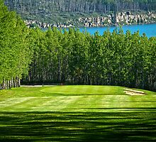 13th Hole @ Lakepoint Golf & Country Club by peaceofthenorth