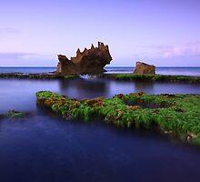 dragon head reef by joel Durbridge