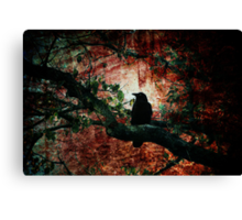 Tempting Fate Canvas Print