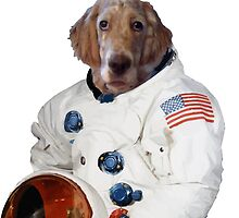 Funny dog astronaut with american flag by funnyshirts