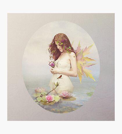 Violette Photographic Print