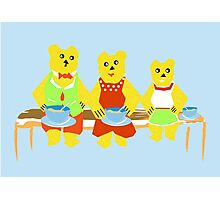 Family Bears Of Three Photographic Print