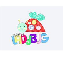 Lovely Ladybug Photographic Print