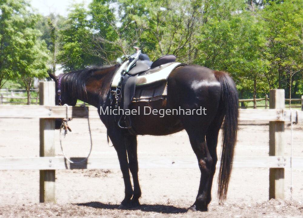 Her cowboy is gone by Michael Degenhardt
