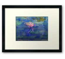 Waterlily Collage  Framed Print